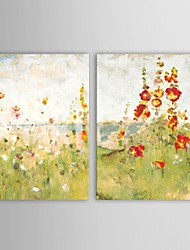Hand Painted Oil Painting Floral Spring Flowers with Stretched Frame Set of 2