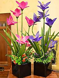 "18 ""H Vivid Orchideen Arrangement mit schwarzem Keramik-Vase"