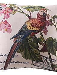 país muito papagaio algodão / linho fronha decorativo