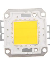 zdm ™ 20w 1700-1800lm haute puissance intégré conduit 4500k naturel dc32-35v 600ua blanc