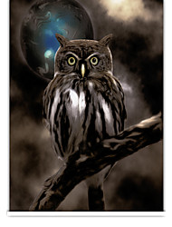 Lifelike Night Owl Roller Shade
