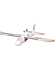 FMS 800mm Easy trainer RC Airplane