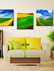 Personalized Canvas Print Pastoral Scenery 30x30cm  40x40cm  60x60cm  Gallery Wrapped Art Set of 3