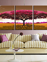 Stretched Canvas Art Botanical Love of Tree Set of 3