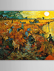 Pintura a Óleo Pintada à Mão com Moldura Esticada - The Red Vineyard at Arles (Vincent Van Gogh)