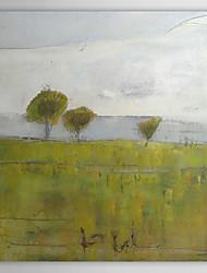 Dipinti a mano olio pittura di paesaggio 1211-LS0219