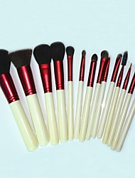 14 Makeup Brushes Set Nylon Face / Lip / Eye Others