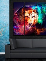 E-HOME® Stretched Canvas Art The Gorgeous Color Wolf Decorative Painting  Set of 3
