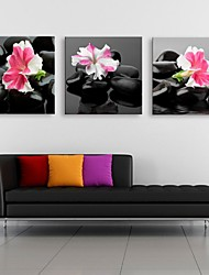 Personalized Canvas Print Stone Flower 30x30cm 40x40cm 60x60cm Framed Canvas Painting Set of 3