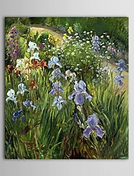 Hand Painted Oil Painting Landscape Wild Flower Natural Scenery with Stretched Frame