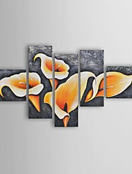 Oil Painting Modern Floral Light within Lilies Set of 5 Hand Painted Canvas with Stretched Frame