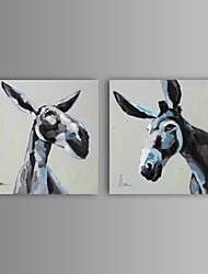 Oil Painting Modern Abstract Horse Hand Painted Canvas with Stretched Frame Set of 2