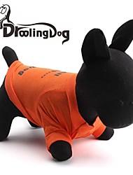 Katzen / Hunde T-shirt Orange Hundekleidung Frühling/Herbst Buchstabe & Nummer