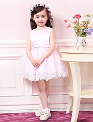 Girl's Polyester/Mesh Dress , Summer/Fall Sleeveless