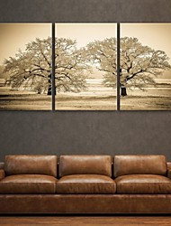 E-Home® Leinwand Kunstbaumdekoration Malerei Set von 3
