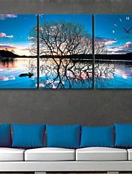 e-home® o reflexo do relógio árvores em lona 3pcs