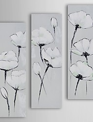 Oil Painting Modern Floral White on White Poppies Set of 3 Hand Painted Canvas with Stretched Frame