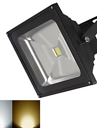 20W 1 COB 1800 LM Тёплый белый / Холодный белый LED прожекторы DC 12 V