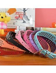 Cat / Dog Collar Rhinestone Red / Black / Blue / Pink / Purple / Orange / Rose PU Leather