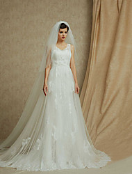 A-line Cathedral Train Wedding Dress -V-neck Lace
