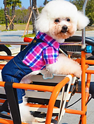 Dog Shirt / T-Shirt / Pants Green / Rose Dog Clothes Summer Jeans