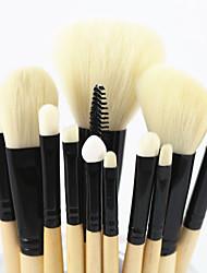 Professional Makeup Brushes Set 12 pcs Premium Makeup Tools Kit