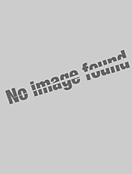 Pendant Light ,  Modern/Contemporary Traditional/Classic Rustic/Lodge Vintage Lantern Drum Country Island Globe Bowl Others Feature for