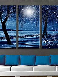 E-HOME® Stretched LED Canvas Print Art Snowy Night Flash Effect LED Flashing Optical Fiber Print Set of 3