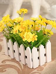 """5,5 """"6,3 l"""" marguerites multicolores de style pays h en clôture blanche"""
