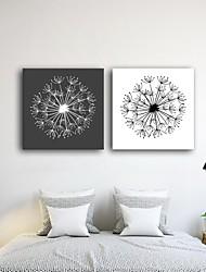 Stretched Canvas Print Art Dandelion Set of 2