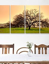 е-Home® растягивается холсте деревья и трава Декоративная роспись Набор из 4