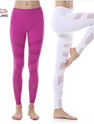 Yokaland Yoga and Fitness Angle Legging Unique Mesh Fabric and Textile Combination Design