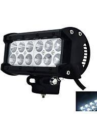 Carmen ® 36W  Stripr Working Light   CREE LEDS  CAR /SUV Waterproof 6000K