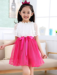 Girl's Lace Shawl Mesh Princess Dresses