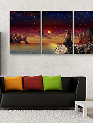 E-HOME® Stretched LED Canvas Print Art The Leopard Back LED Flashing Optical Fiber Print Set of 3