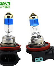 XENCN H11 12V 55W 5000K Teleeye Intense Light Car Bulbs Replace Upgrade Excellent Quality Fog Halogen Lamp