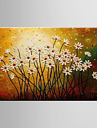 Oil Painting Decoration Hand Painted Canvas with Stretched Framed S/M/X/XL