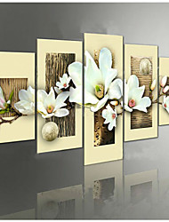 Hand-painted  Orchid Flowers Group Oil Paintings on Canvas 5pcs/set No Frame