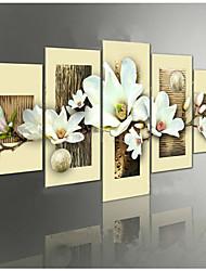 orquídea grupo flores pinturas a óleo pintados à mão em canvas 5pcs / set sem moldura