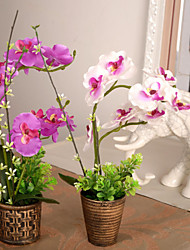 Artificial Flowers Simulation Phalaenopsis with Vase Home / Garden Decor (30*25*11cm)