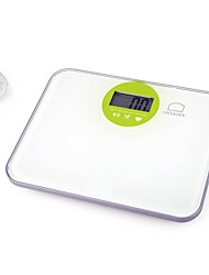 LOCK&LOCK Electronic Personal Scale