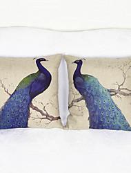 conjunto de 2 pavão tampa da caixa de jogar travesseiro fronha de almofada sofá decoração de casa (17 * 17 polegadas)