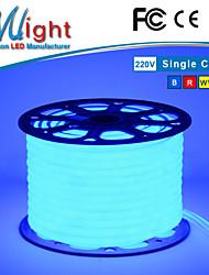 Mlight 50 meters 5050  Flexible Neon Tube LED Strip Light IP65 CE RoHS OEM 110V 220V Ultra Bright