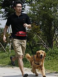 Newest Design Pet Pocket Hands Free Dog Leash