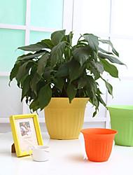 "shengerda 6.8 ""colorido vaso verticais listra plástico, vinte vasos de flores para um conjunto"