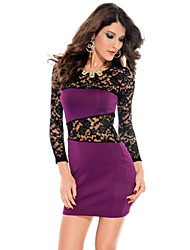 Women's Sexy Bodycon Lace Cute Party Plus Sizes Micro Elastic Long Sleeve Above Knee Dress (Lace/Microfiber)