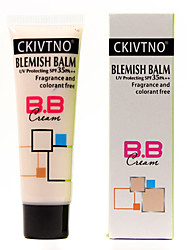 60ml Professional Whitening Concealer Segregate BB Cream