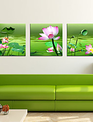 Prints Poster Painting Lotus flowers Picture Home  Print On Canvas  3pcs/set (Without Frame)