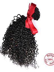 EVET Curly Hair Kinky Virgin Extensions Malaysian Hair Weaves Bundle Kinky Curly Hair Natural Color 1pc 100g/pc