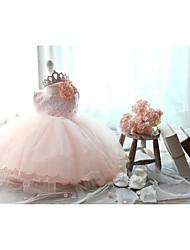 Ball Gown Knee-length Flower Girl Dress - Lace/Tulle Sleeveless